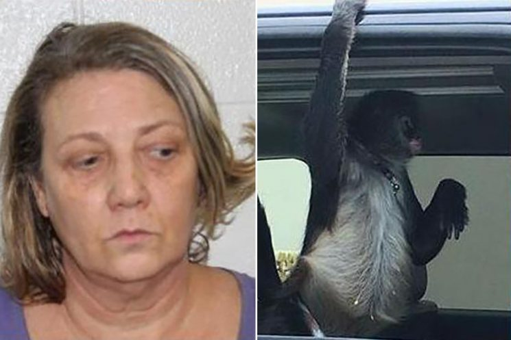 Woman arrested after pet monkey allegedly attacks store workers