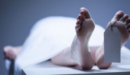 What happens to your body when you die - bit by bit from when your heart stops