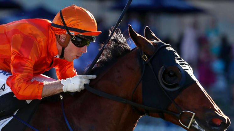 Trainer Thompson ready to unleash twin threat at Rosehill