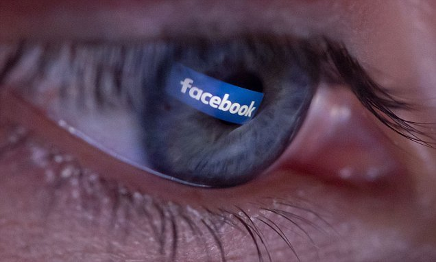 German court: Facebook should grant mum access to dead daughter's page