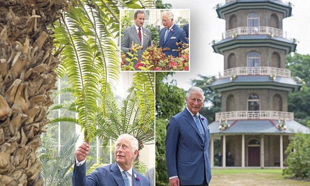 Prince Charles admires the newly restored Great Pagoda at Kew gardens