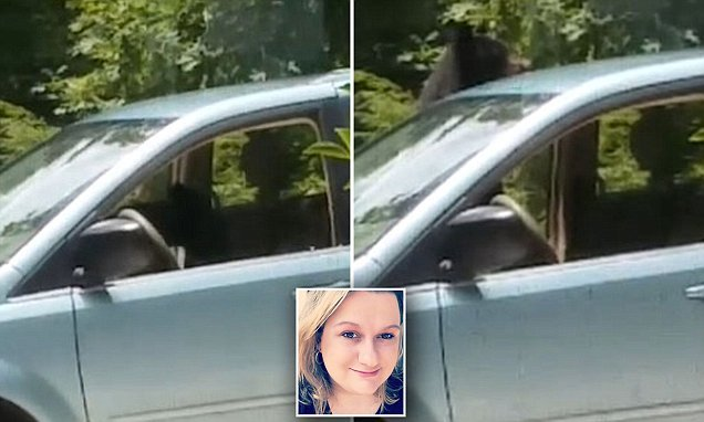 Black bear noshes on lunch inside surprised Georgia woman's minivan