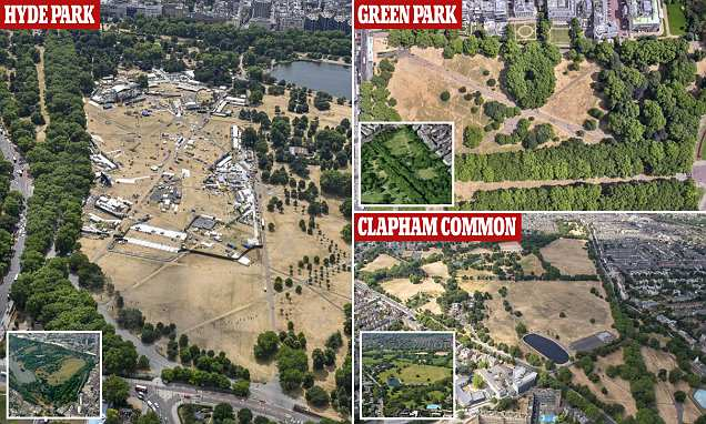 Scorched Britain: Amazing aerial photos of London's dry famous parks