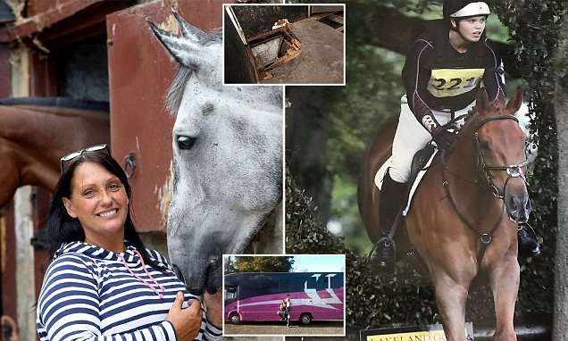 Family whose prized horse was killed wins payout