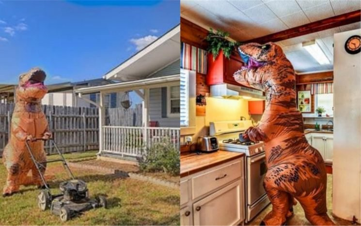 A Dinosaur Posed In This House Listing's Pictures & They Are Truly Iconic