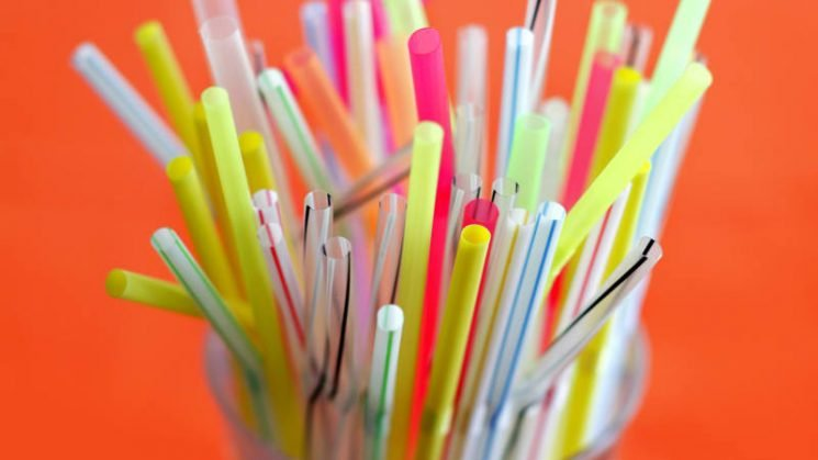 Seattle becomes first major US city to ban straws