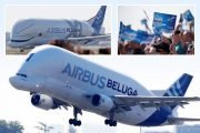 Airbus's huge Beluga XL plane nicknamed 'the whale in the sky' takes maiden flight