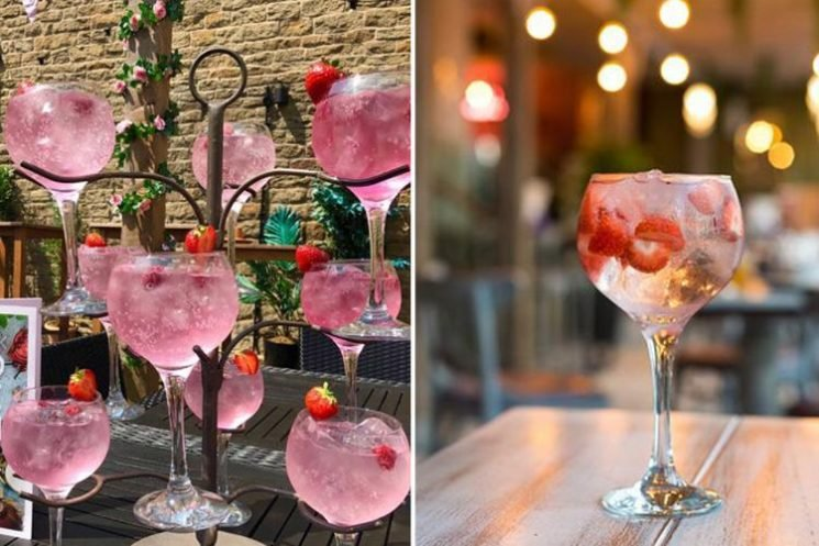 A pink gin TREE is said to be launching at Slug and Lettuce… and it looks perfect for a girly night out