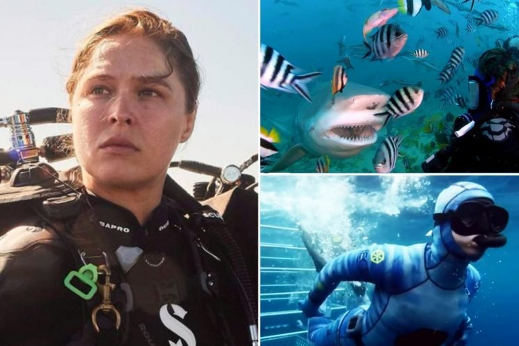 WWE star Ronda Rousey swims with ocean's most fearsome predators as UFC legend celebrates Shark Week