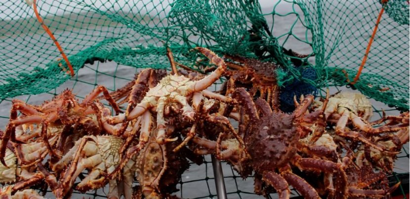 New Jersey Man May Lose Limbs After Contracting Flesh Eating Bacteria While Crabbing