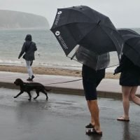 Yellow warning issued by Met Office as violent thunderstorms disrupt heatwave
