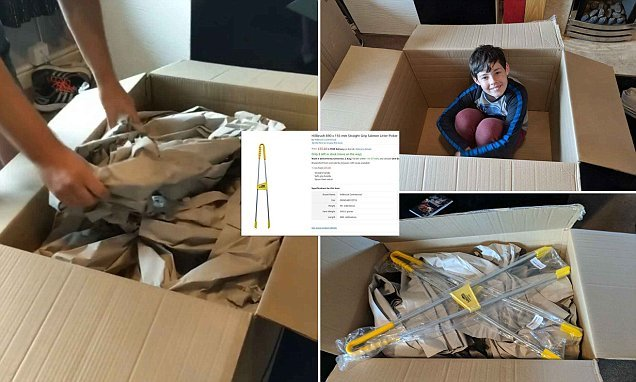 Amazon customer stunned as litter pickers arrive in two giant boxes