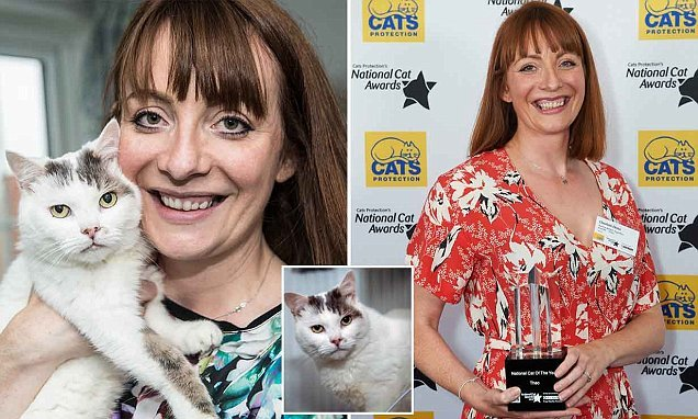 Life-saving moggy is named National Cat of the Year