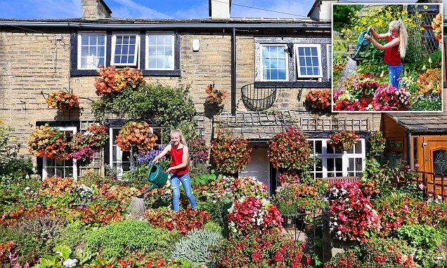 Girl, 12, helps her great-grandfather, 84, tend to stunning garden