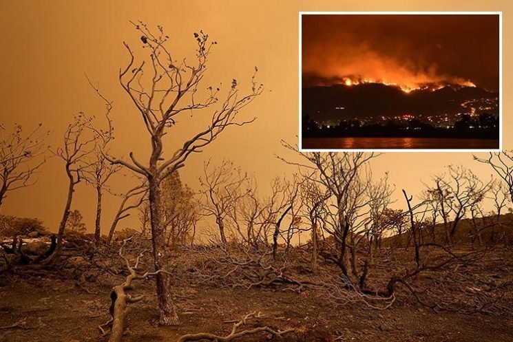 Apocalyptic scenes in California as raging wildfires 'sparked by arsonists' destroy 470 square miles forcing firefighters from Australia and New Zealand to be drafted in