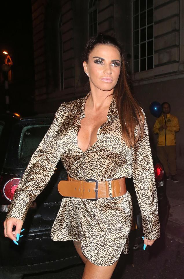 Cash-strapped Katie Price to 'launch her own range of sex toys' with new boyfriend Kris Boyson