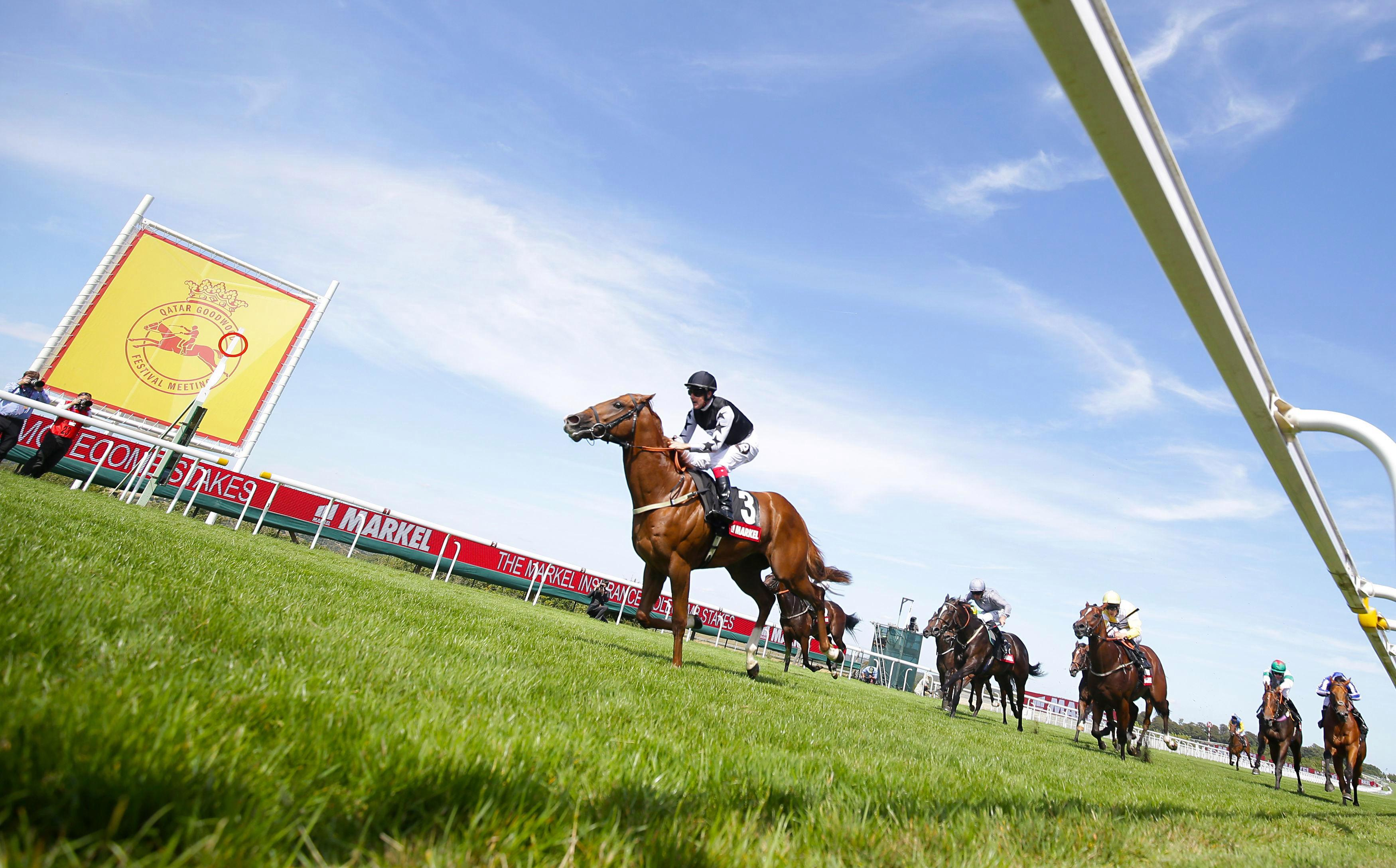 Glorious Goodwood tips: Templegate's racing tips for all of