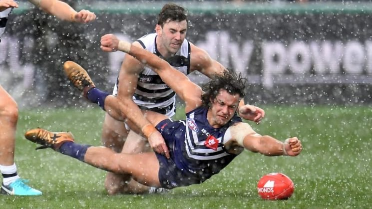 Cats charge into the eight after Docker demolition