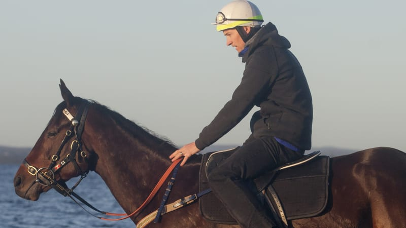 Meet the man whose job it is to go slow on Winx