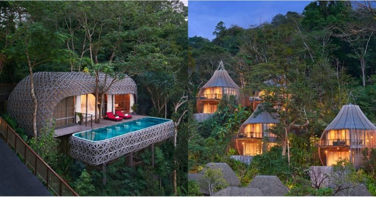 1 Look at These Incredible Photos, and You'll Be Booking a Trip to This Treetop Hotel