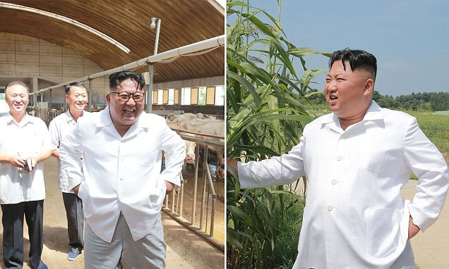 Kim Jong-un tour cattle farm and demand workers improve cow breeding