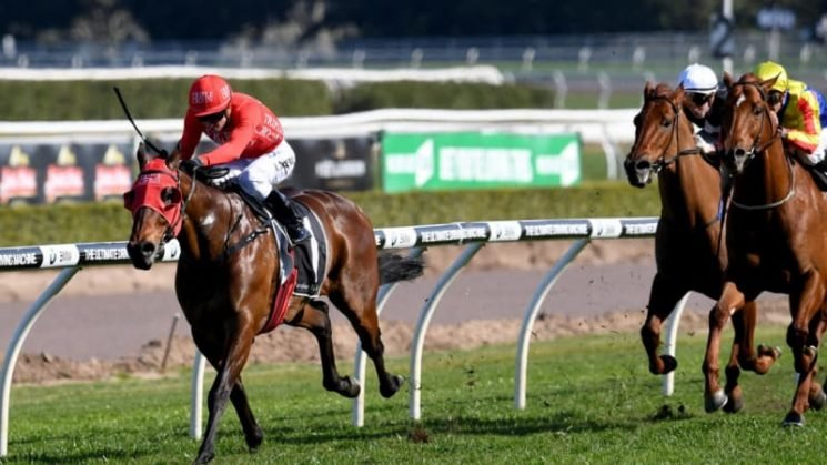 Redzel at the same level as he takes off towards The Everest