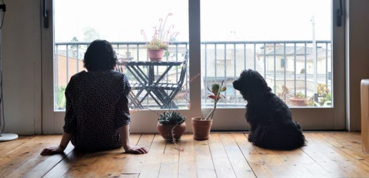 It Turns Out Dogs Can Offer Mental Health Benefits To Their Owners