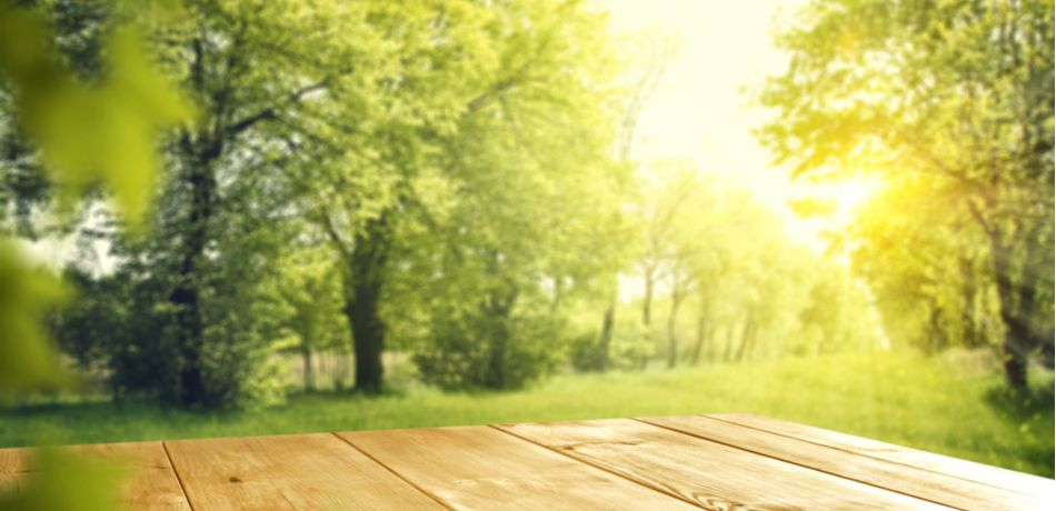Impact Of Natural Light On Mental Health