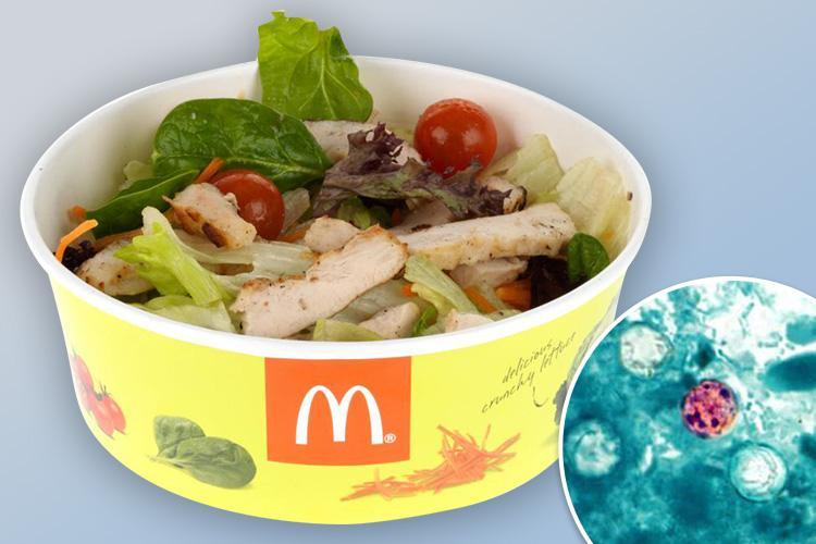 Outrage as 'human poo bug' in McDonald's salad continues to spread across America leaving hundreds violently ill and hospitalising 20