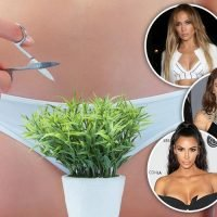 As Vogue rules the bush is back, here's what styles stars have been opting for downstairs