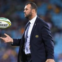 Defiant Cheika not going anywhere after another Wallaby loss