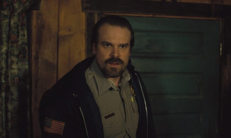 This Photo Of David Harbour Officiating A 'Stranger Things' Fan's Wedding Is FLAWLESS