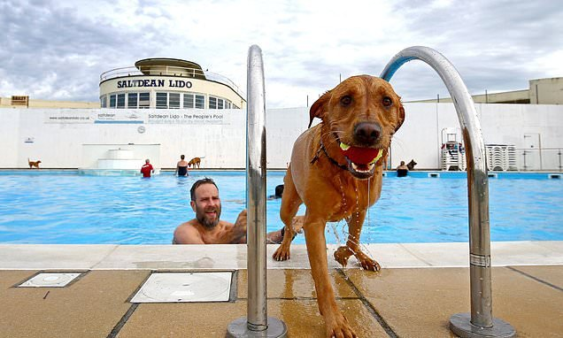 Dogs enjoy a dip in Brighton lido as pool marks end of summer season