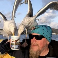 Birds swarm to drink from captain's cuppa – even perching on his head