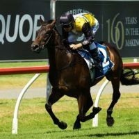 Jonker primed to spring surprise in Golden Rose