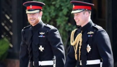 Prince Harry or Prince William: Which Royal is More Popular?