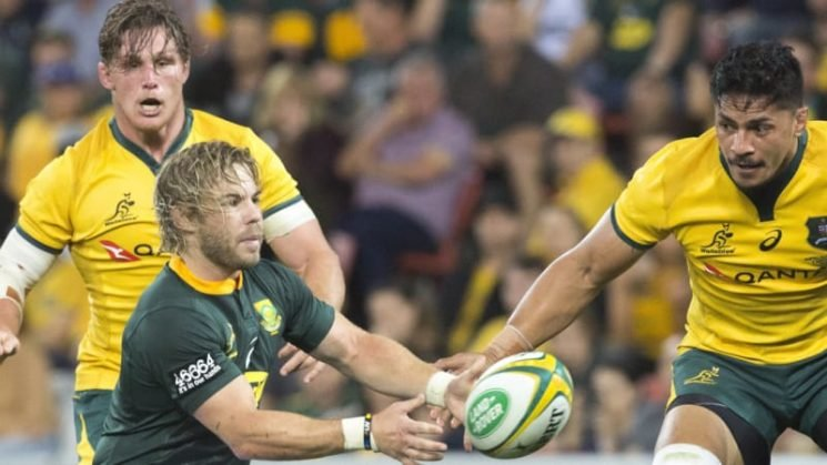 Wallabies as good as All Blacks on their day: De Klerk