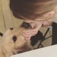 Pooch Smooch! Pregnant Hilary Duff Kisses Her Dog on the Mouth While Dismissing 'Mean Comments'