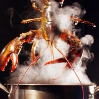 Restaurant Using Marijuana to Sedate Lobsters Is 'Illegal', According to Health Department