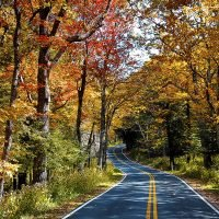 It's Finally Almost Fall! Here's Everything to Know About the Fall Equinox