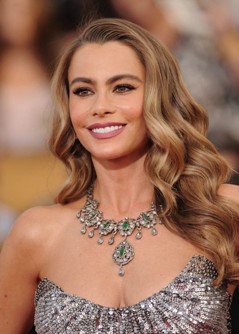 Sofia Vergara Says Becoming One of the Top Paid TV Actresses at 46 Has 'Not Been Easy'