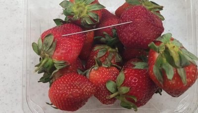 Authorities investigating needle found in strawberry in New Zealand as reports of contamination continue