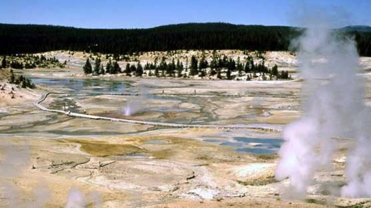 Viral video shows man trying to bathe feet in Yellowstone's thermal hot springs: report