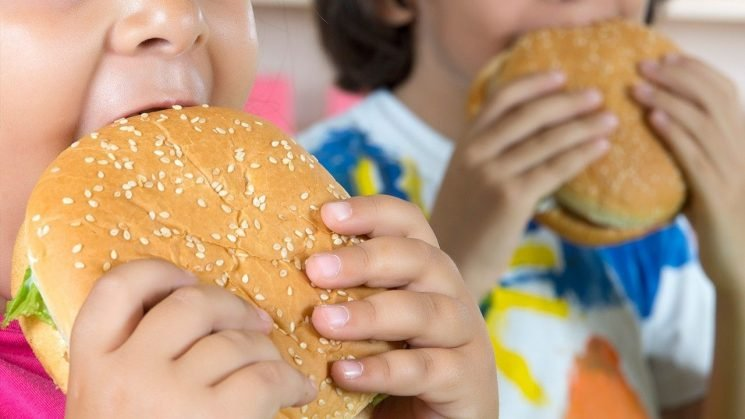 American kids eating fast food more often, ignoring healthier substitutes, study says