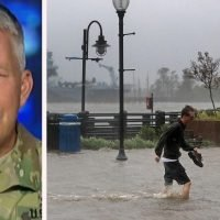 Reporter stops broadcast to save dog from storm floods