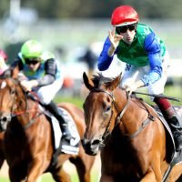 Race-by-race guide and tips for Randwick on Saturday