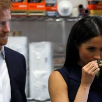 Meghan and Harry get taste of Oz with cookery class – and kangaroo for lunch