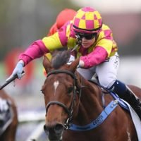 Portelli will launch new two-year-old Reign – rain, hail or shine