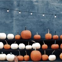 These Fall Festivals Will Give You a Hankering For Hot Cider, Hay Rides, and Chunky Sweaters
