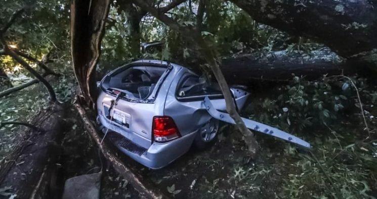 'It destroyed everything': Hurricane Michael leaves Florida devastated